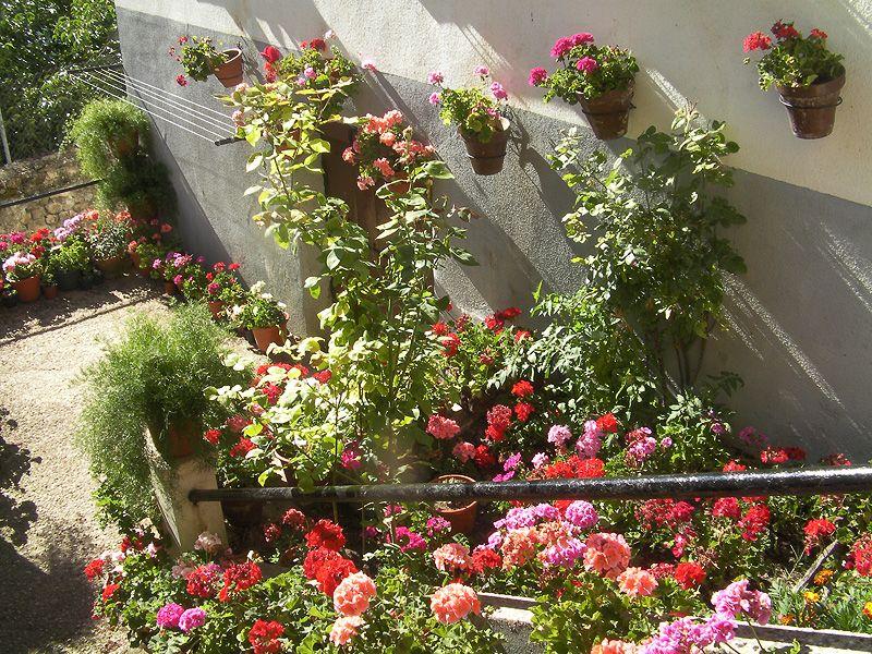 macetas para el jardín Jardines en macetas Pinterest Macetas - maceteros para jardin