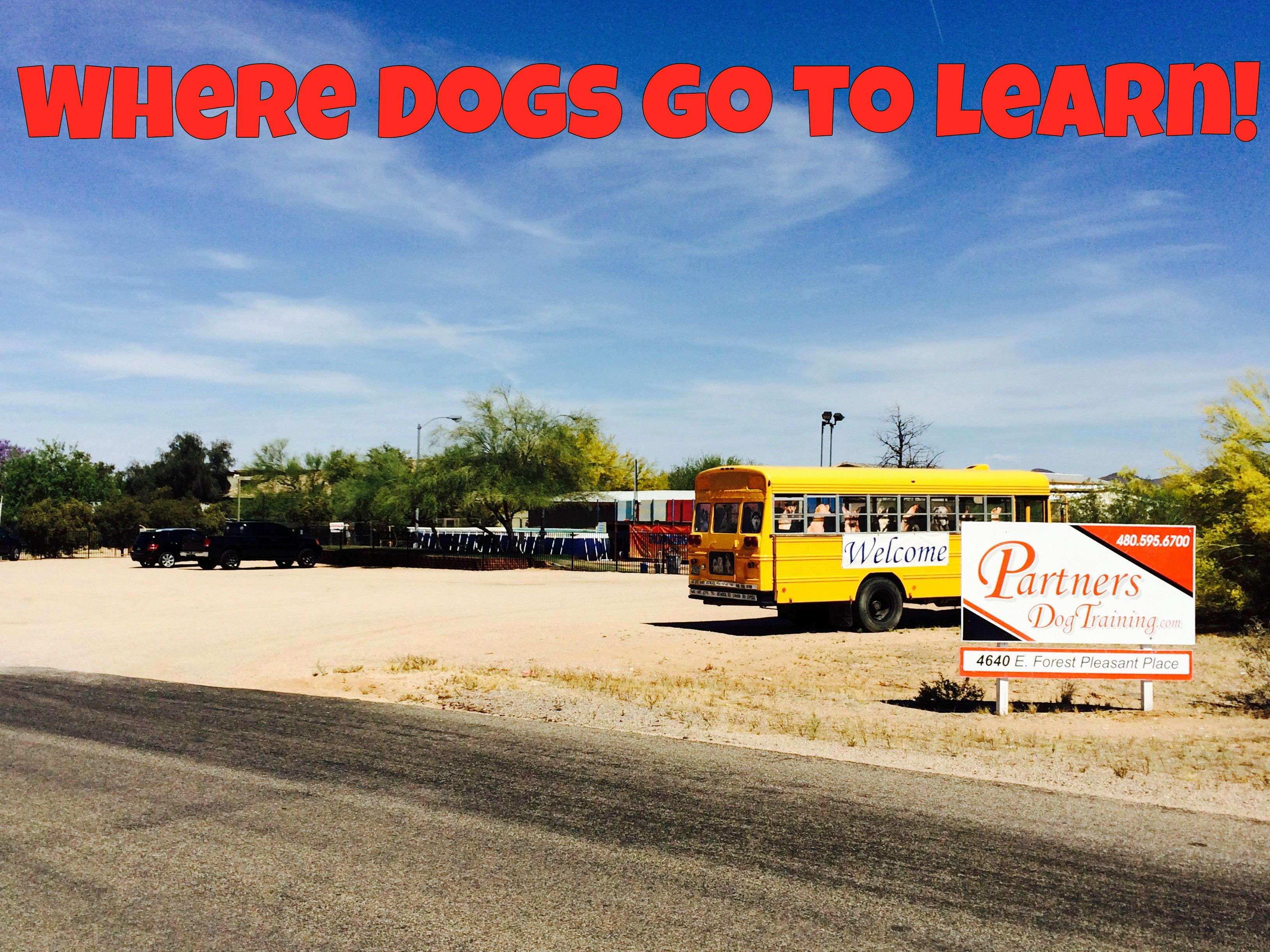 Here Is A Street View Of Partners Dog Training School Just North