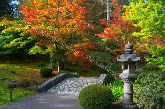 japanese garden bridge, stone lantern, and maples | How does