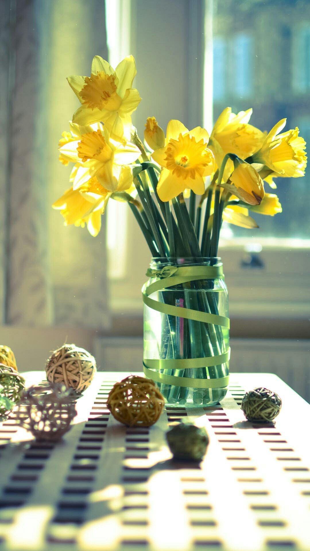 Morning Warm Sunshine Bright Desk Flowers Vase Iphone 6 Wallpaper Desk Flowers Flower Vases Vase Fantastic flower vase wallpaper images