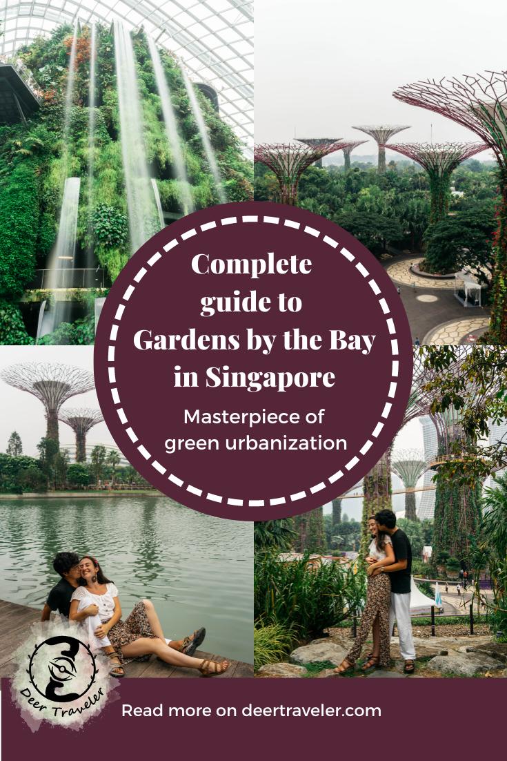 c878b0cadd92b4626161ecc22933123f - Guide To Gardens By The Bay