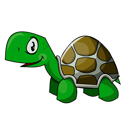 Turtle Cartoon Drawing Turtle Png Image And Clipart Turtle Wallpaper Clip Art Turtle Images