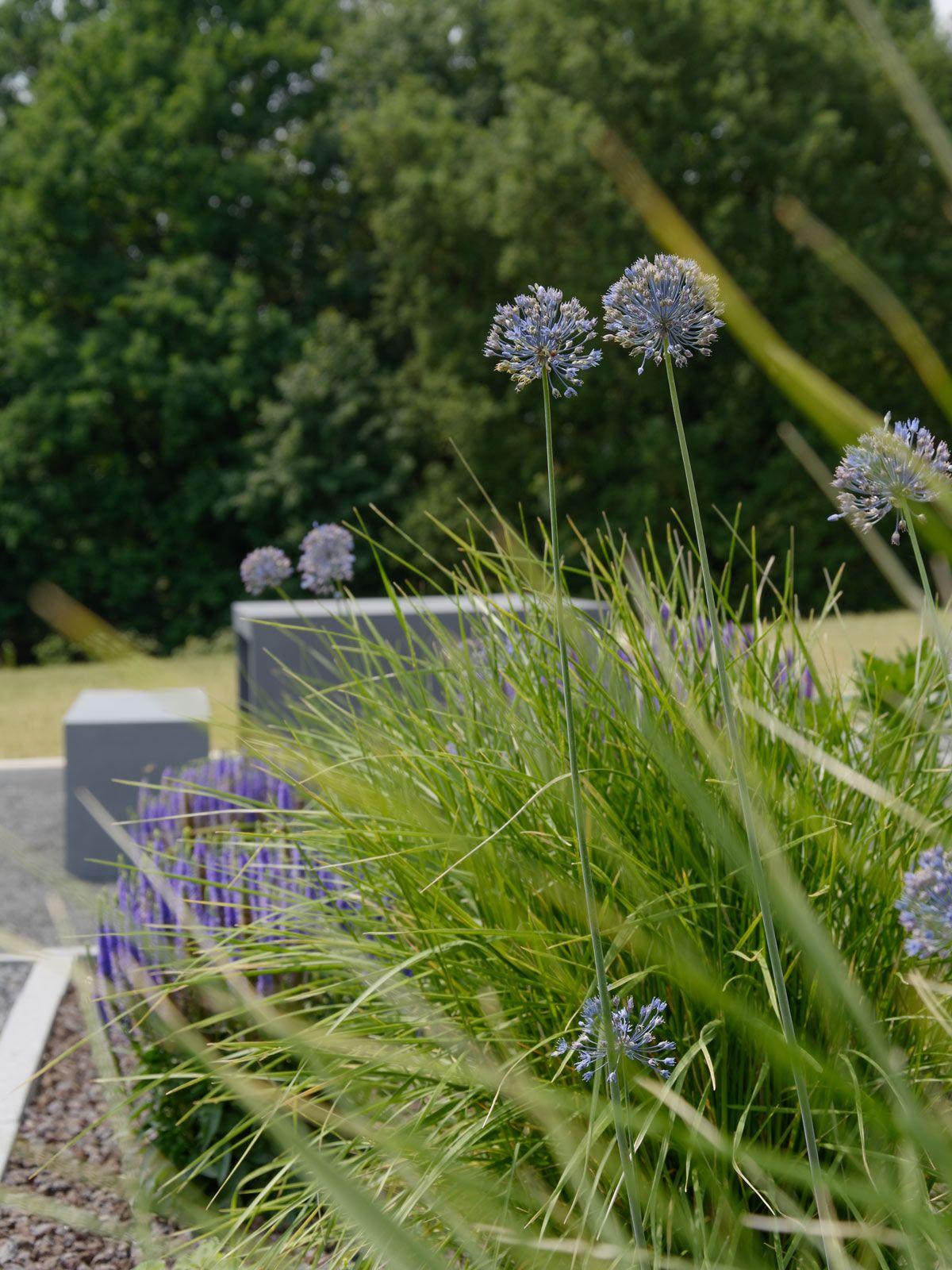 Diy mx living garten pinterest garden plants und for Gartenidee beet