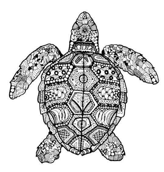 Turtle Mandala Colouring Sheet With Images Zentangle Drawings