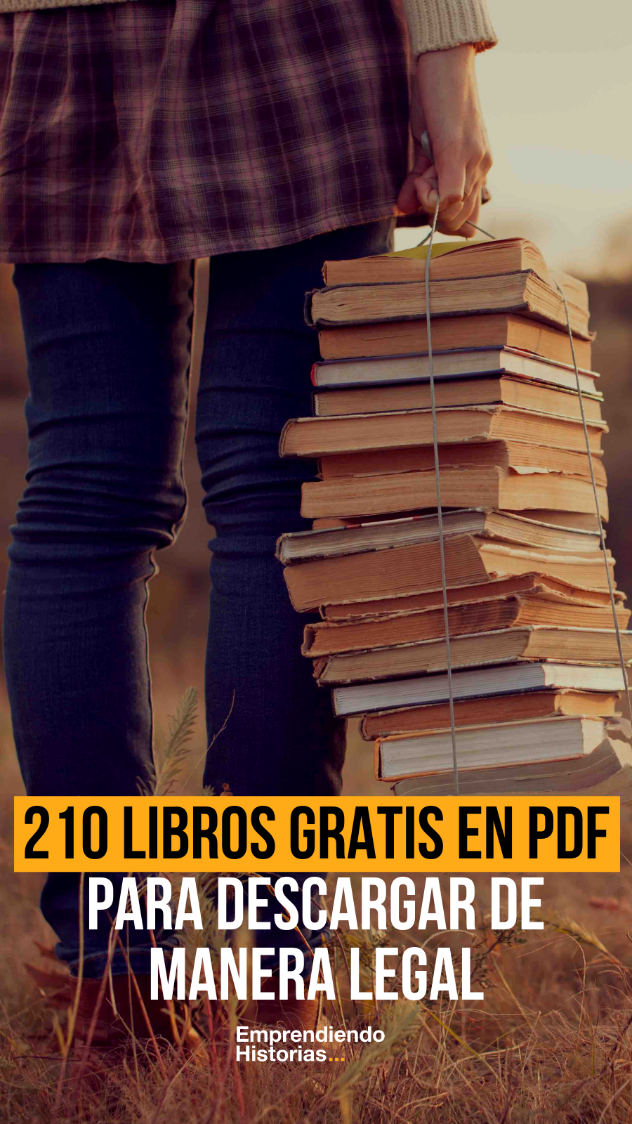 210 Libros Gratis En Pdf Para Descargar De Manera Legal Libros De Motivación Paginas Para Leer Libros Libros De Lectura Gratis