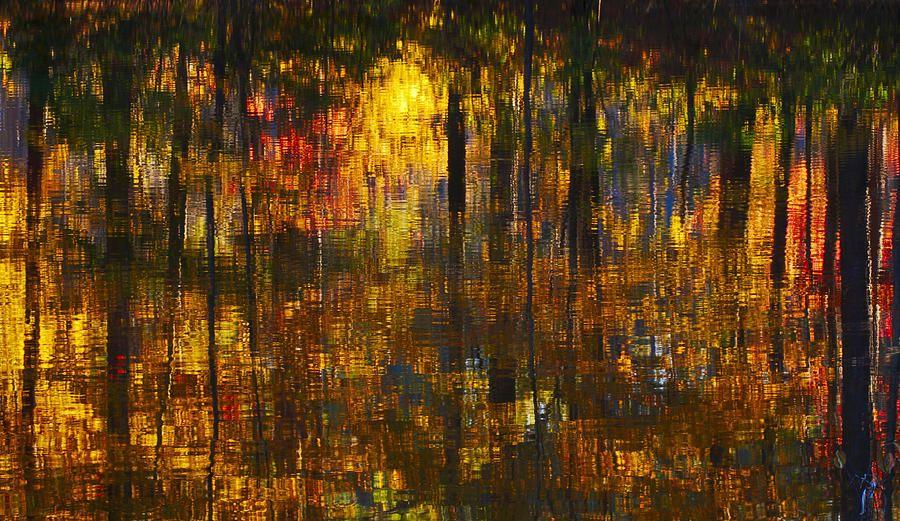 Autumn Reflections Photograph - bill chambers, alabama