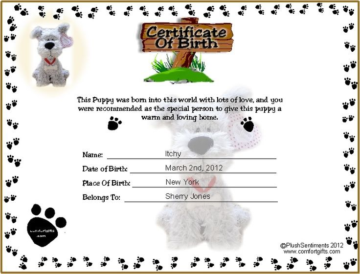 Printable puppy birth certificate template tattoos ideas for Walking certificate templates