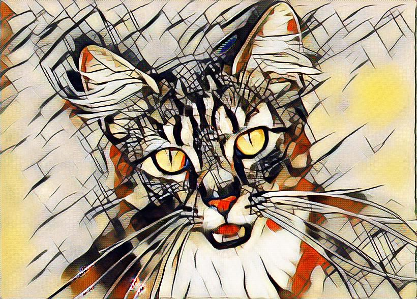 Kandinsky effect tool at lunapic) | Kitty Art | Kandinsky
