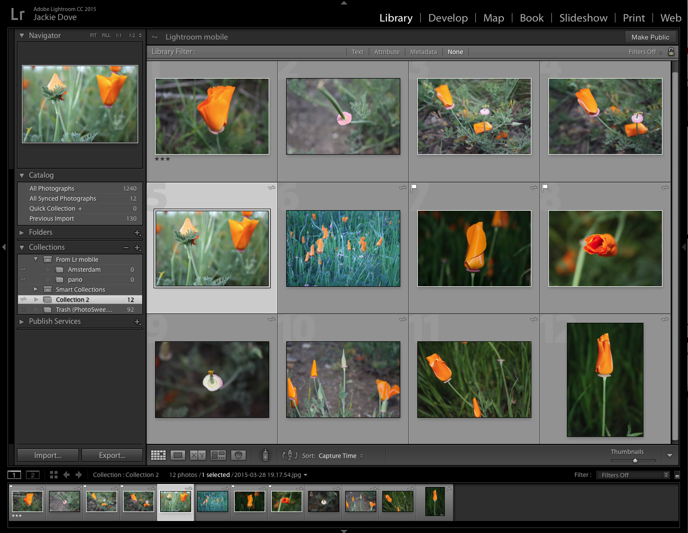 Adobe Launches Lightroom 6 Photo App Update Photo Apps Lightroom Photo