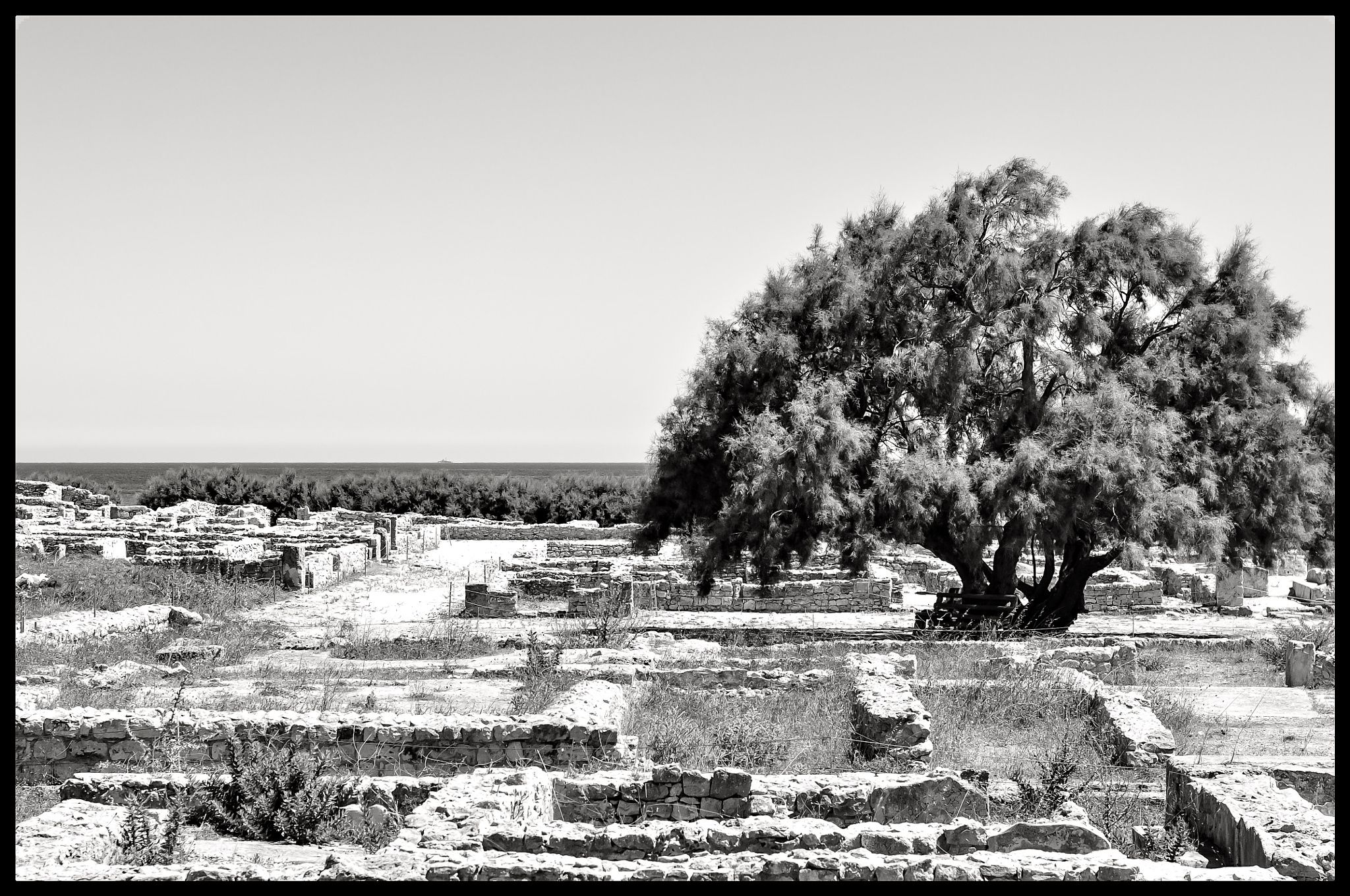 Tunisia, an old history -