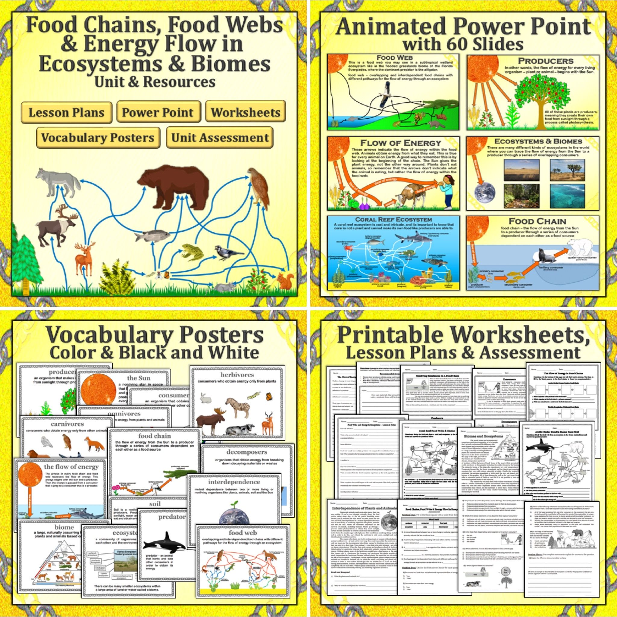 Food Chains Food Webs Energy Flow In Ecosystems And Biomes Unit Food Chain Food Web Ecosystems