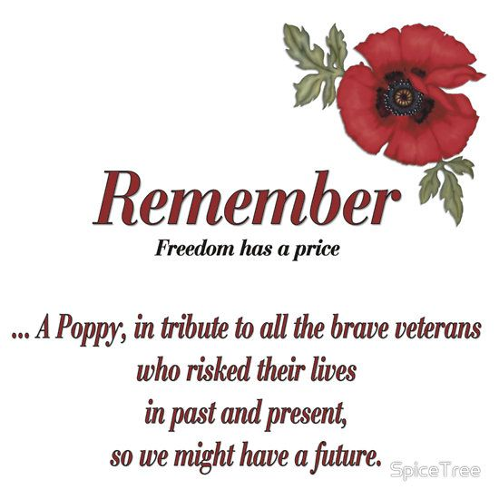 Remembrance Day T-Shirt Remember Them Solders Armistice Day Poppy Tee Top