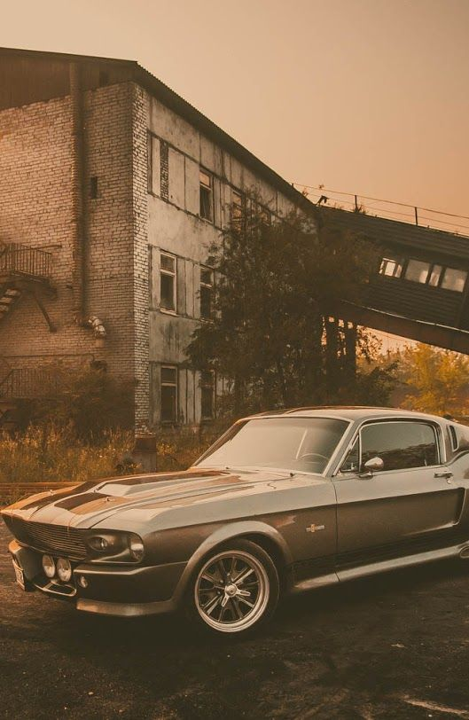 Ford Mustang Shelby Gt Eleanor