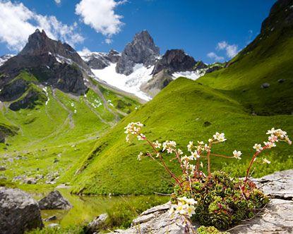 Austria, The hills are alive ... | Vacation Planning ...