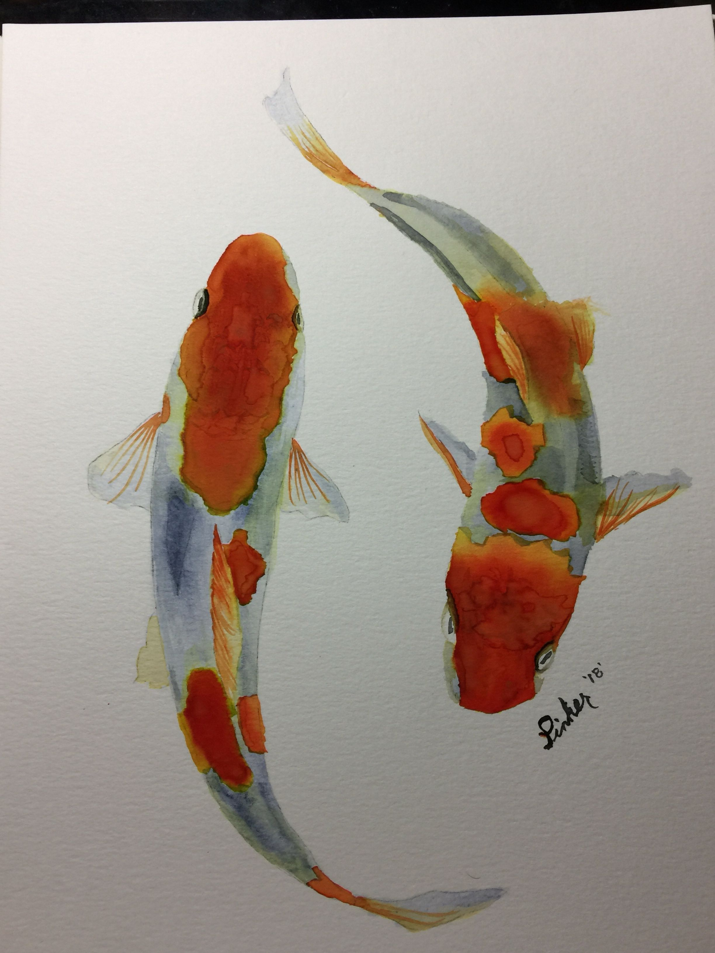 Watercolor Koi Fish Amy Pinker Art Sarah Cray Tutorial Koi