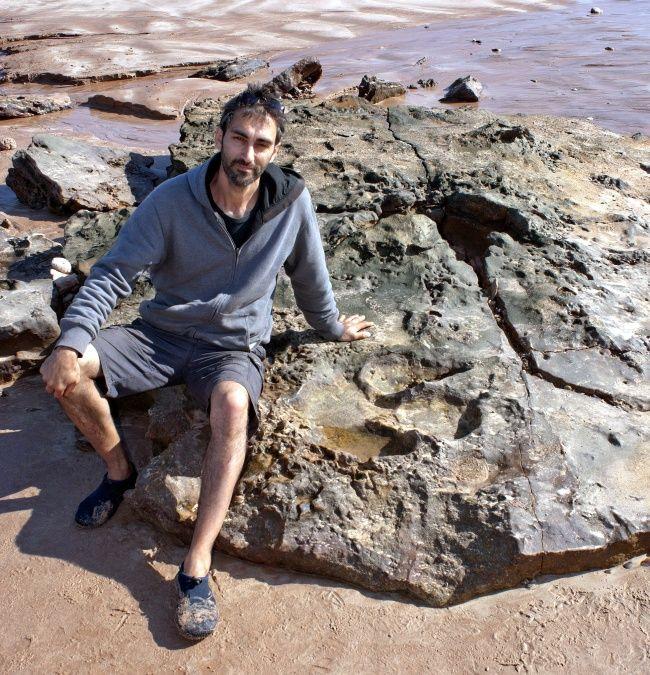 Huellas de dinosaurios podrían no ser de una estampida