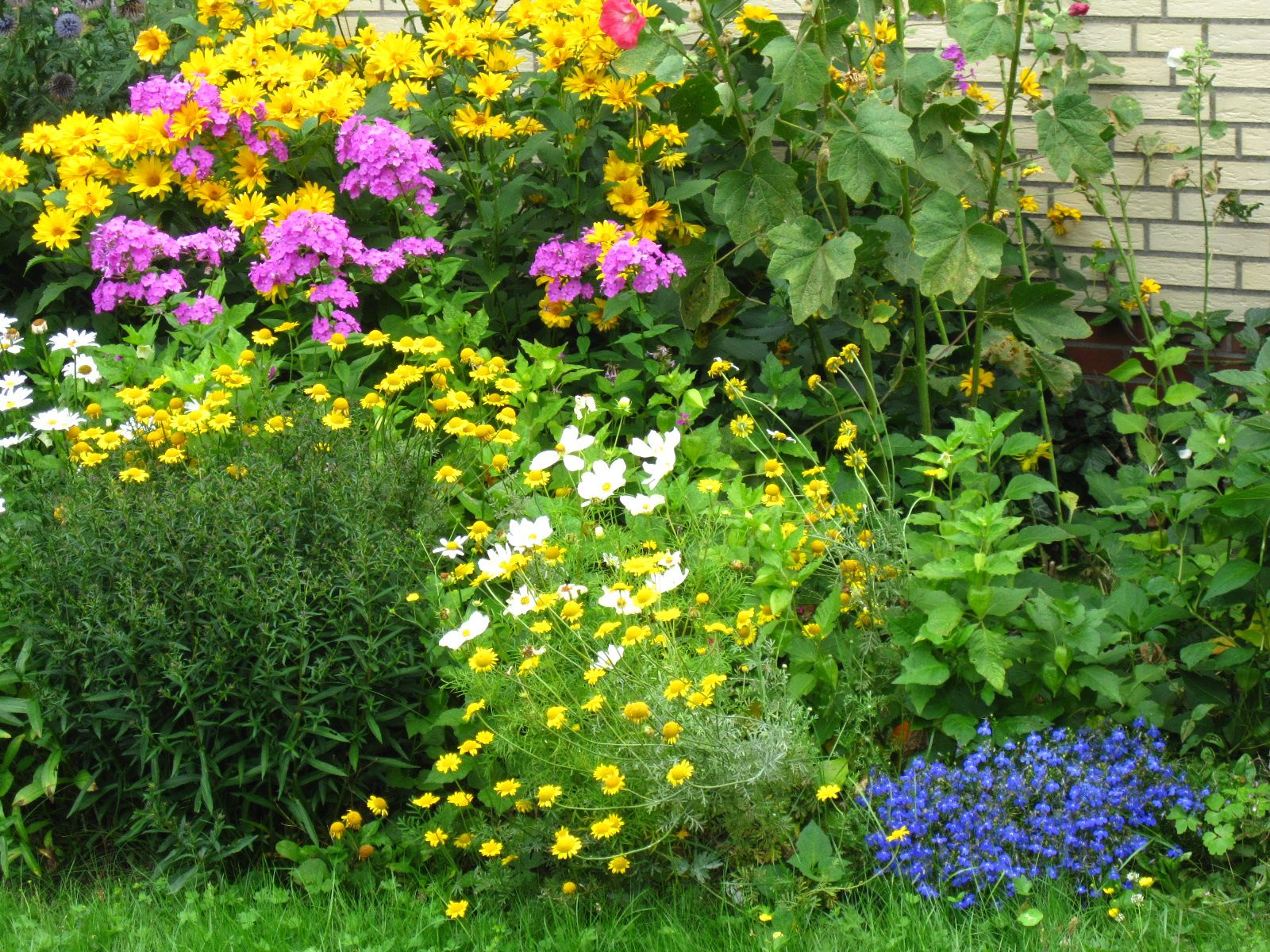 summergarden 1