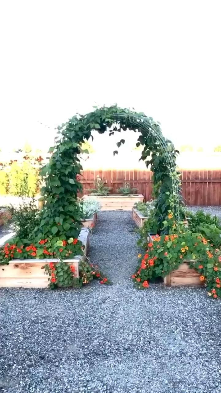 How to build an arched garden trellis.