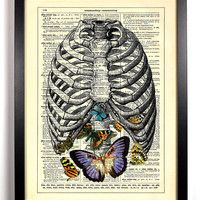 A Belly full Of Butterflies, Vintage Dictionary Print, 8 x 10
