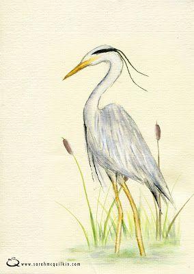 Sarah McQuilkin Illustration - Heron