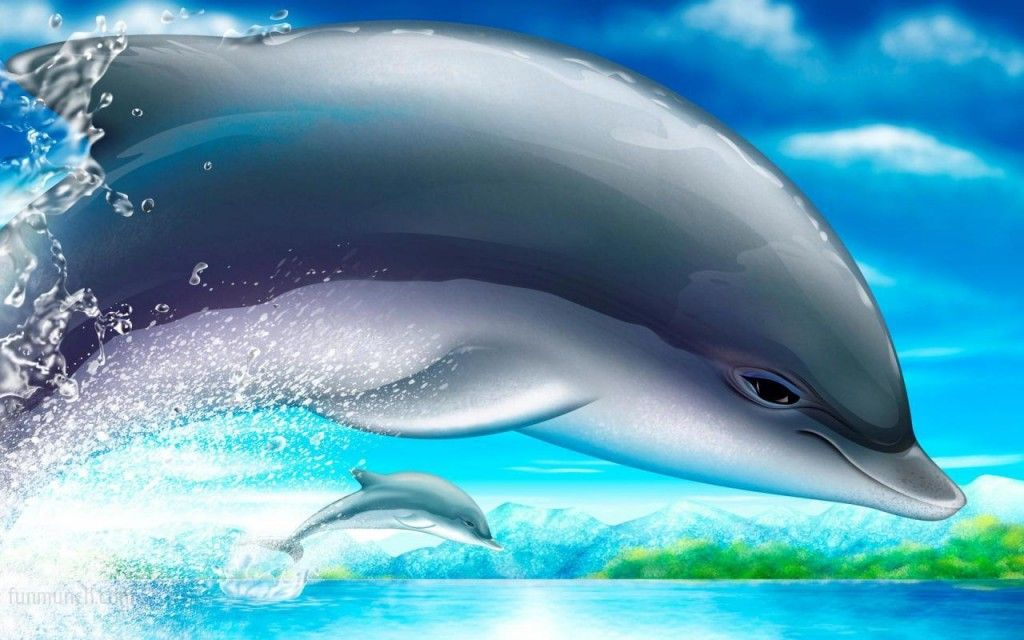 Dolphin 3D Wallpapers Widescreen Background Wallpaper HD