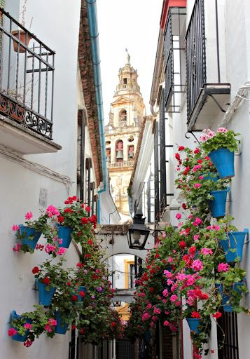 Calleja de las Flores, Córdoba,Spain.