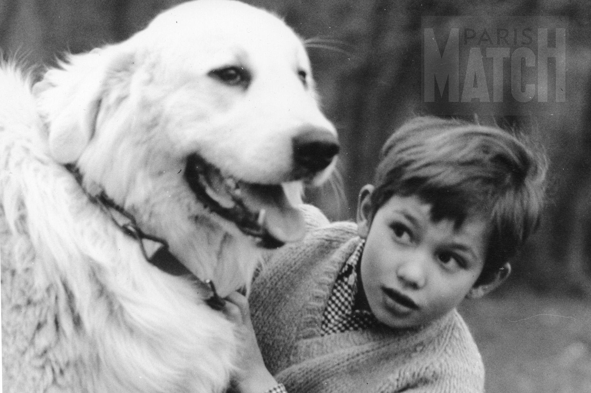 """Résultat de recherche d'images pour """"mehdi belle et sebastien"""""""