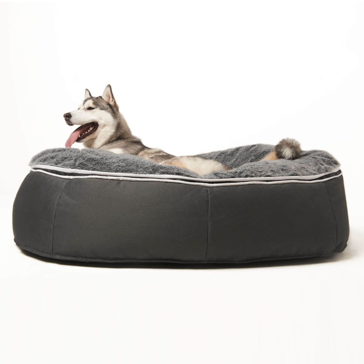 Ambient Lounge® Pet Lounge Large Put your canine on