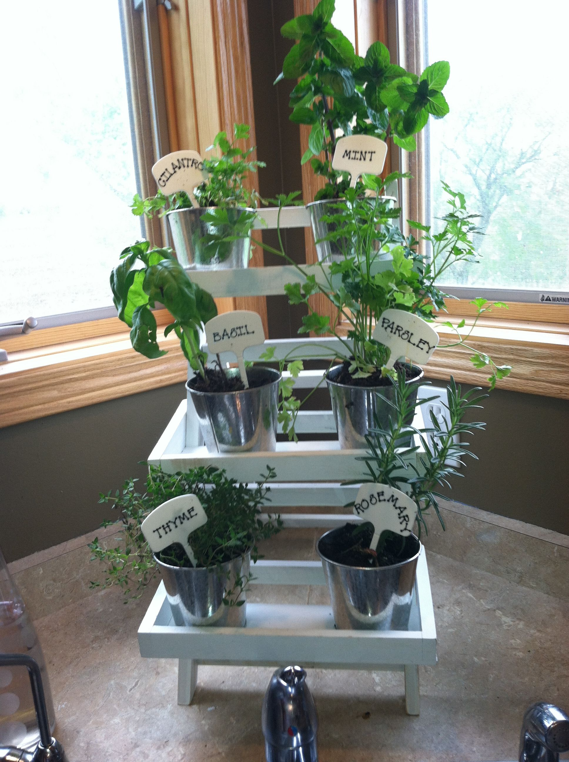 Mini herb garden behind the corner kitchen sink Corner