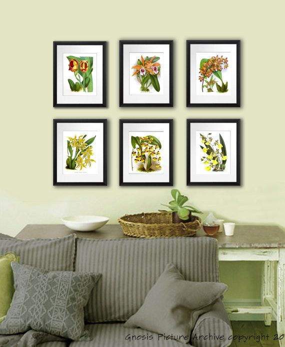 Orchid Plants Botanical Print Set Of 6 Vintage Orange Yellow Orchid Flowers  Prints Tropical Island Hawaiian Decor Wall Decor