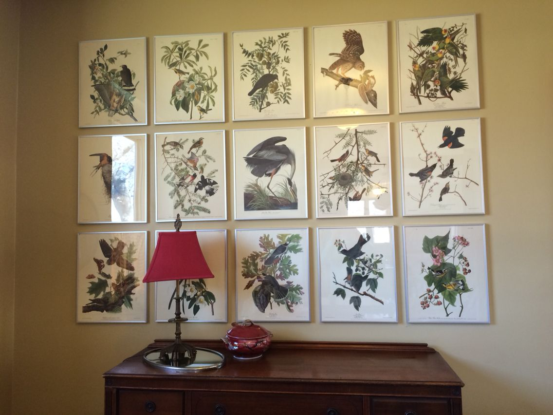 I Took My Inspiration For This Wall Of Prints From The Dining Room In TV Show Good Wife Created Under 200 Audubon Were A