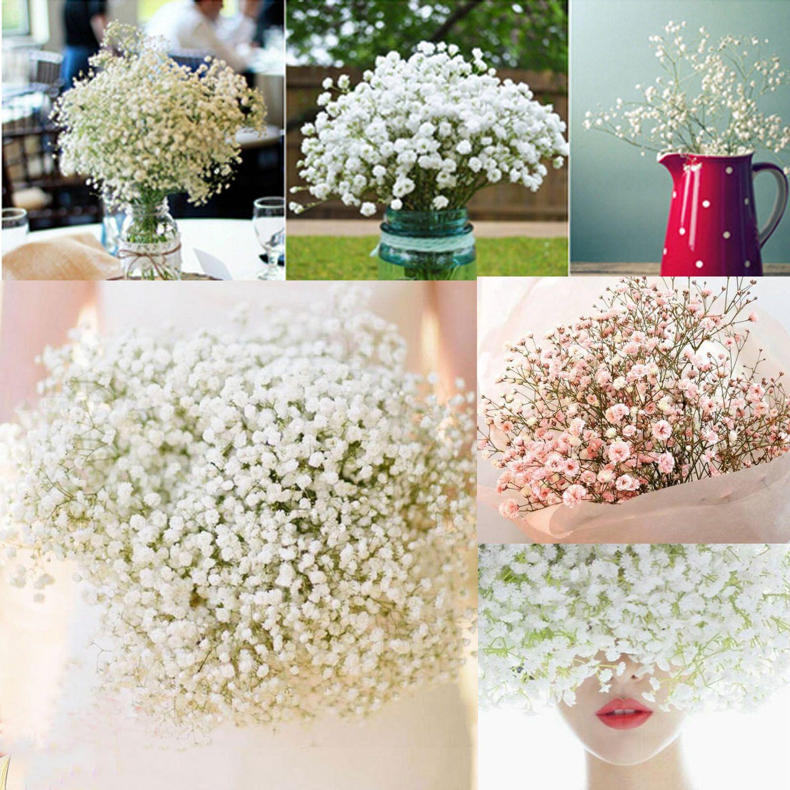 200 Head Wonderful Baby S Breath Gypsophila Silk Flower Party Wedding Home Decor Bouquet Home Decor Wedding Party Bouquets Babys Breath