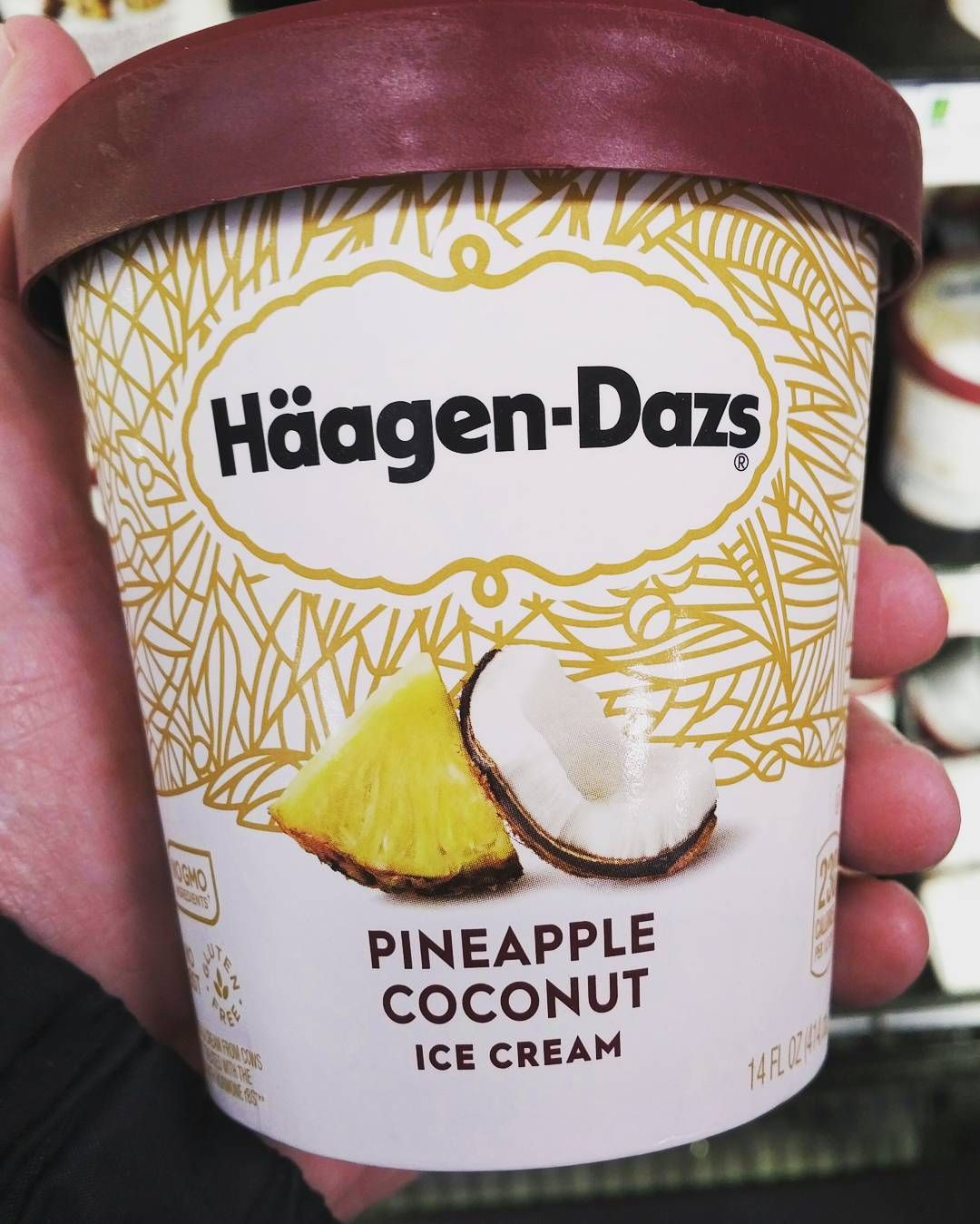 Haagen Dazs Pineapple Coconut Ice Cream Sounds Really Weird To Me Anyone Tried It Haagendazs Pineapple Coconut Ice Cream Coconut Ice Cream Pineapple Coconut
