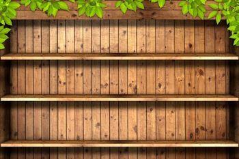 رفوف خشبية خشب النبات 200cm 150cmphotography الخلفيات الخلفيات استوديو الصور جدار من الطوب Ntzc 113 Wooden Books Brick Wall Background Photography Backdrops