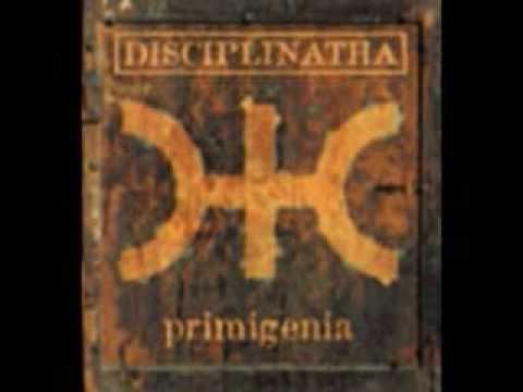 Disciplinatha - new dawn fades (Joy Division cover)