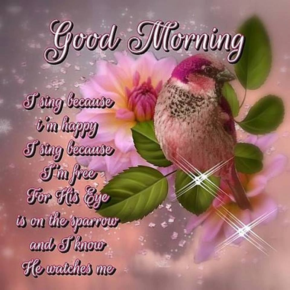 Pin By Mary Engleman Solt On Morning Pinterest Blessings