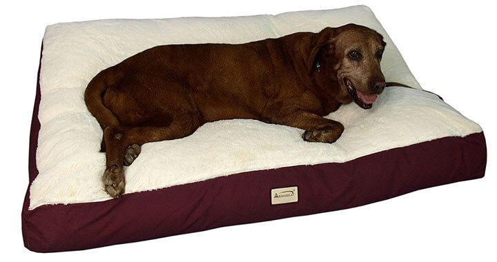 Extra Large Dog Beds Reviewed March 2019 Buyer S Guide With