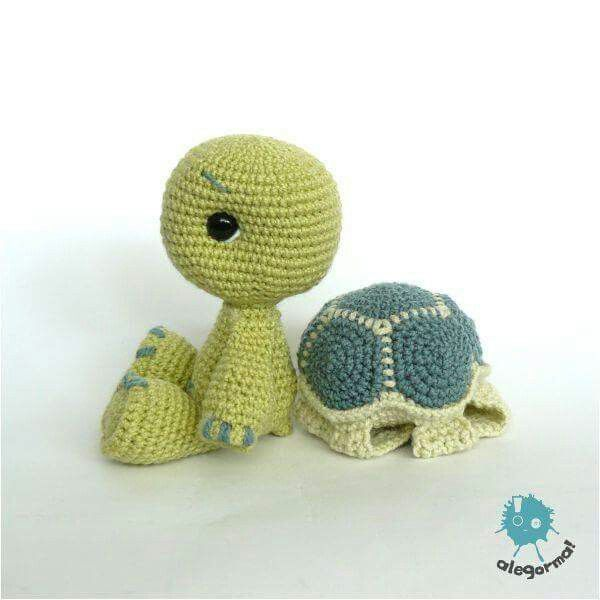 Turtle w/ removable shell