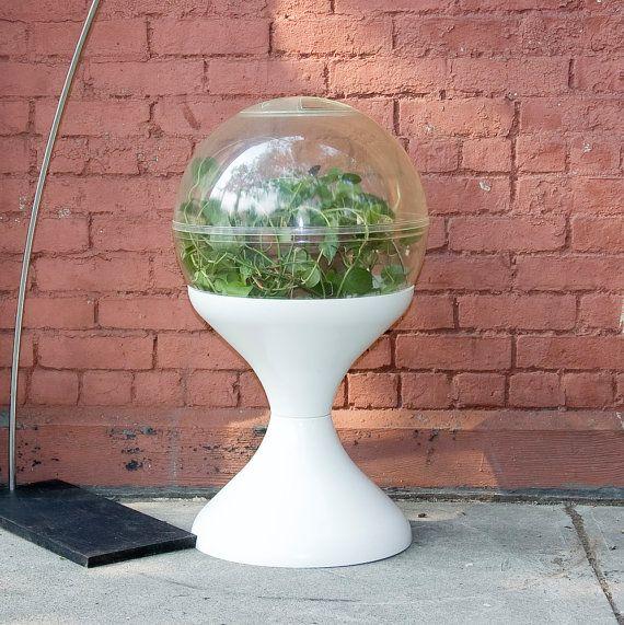 Mid Century Retro Plastic Globe Terrarium Large Terrarium Terrarium Miniature Plants
