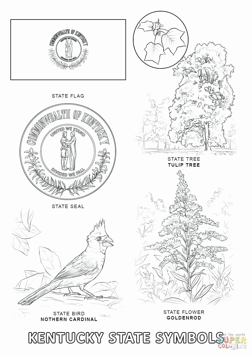 Virginia State Flag Coloring Page Di 2020 Alabama