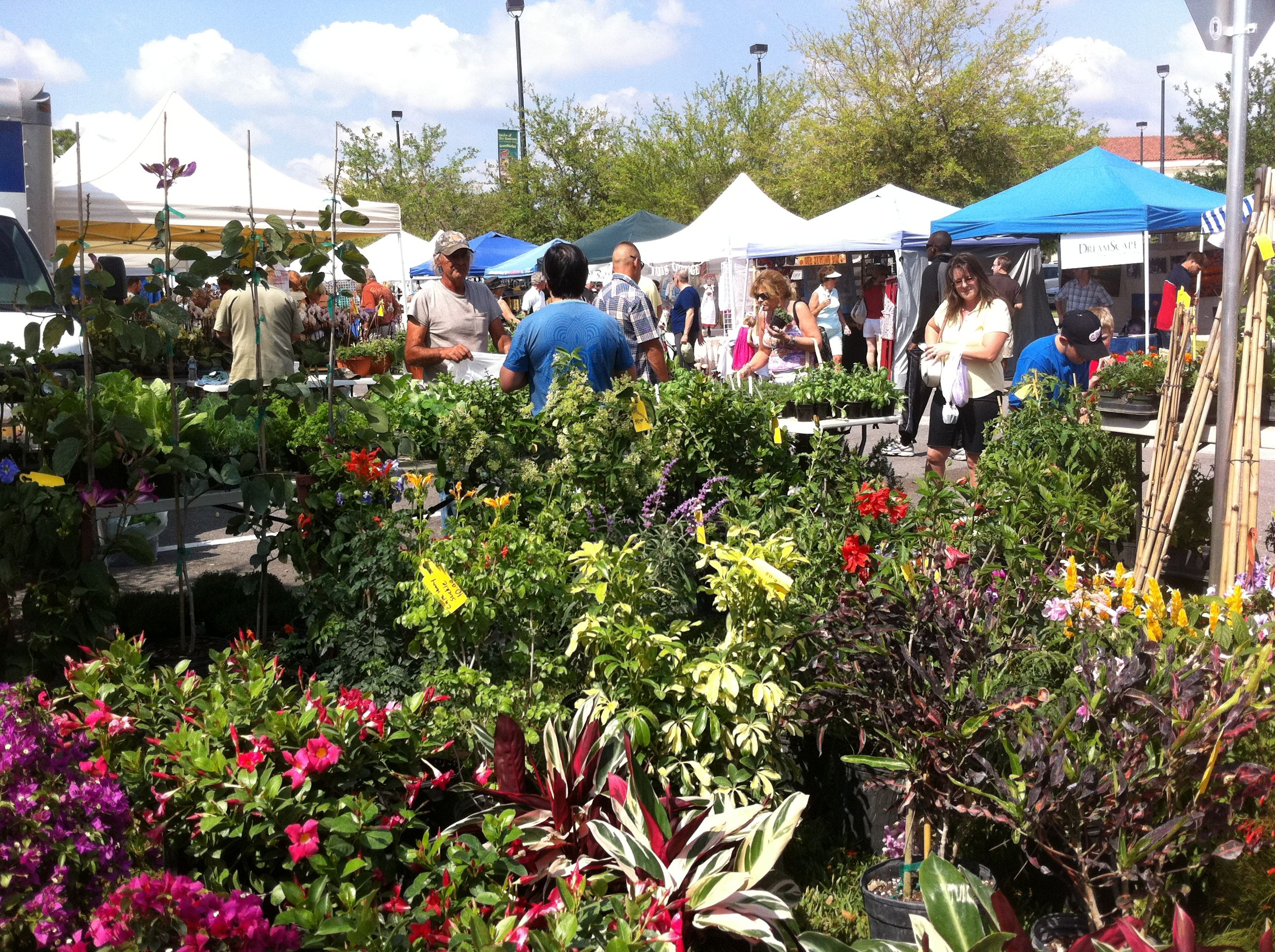 Palm Beach Gardens Green Market held every Sunday from 8 am to 1 pm ...