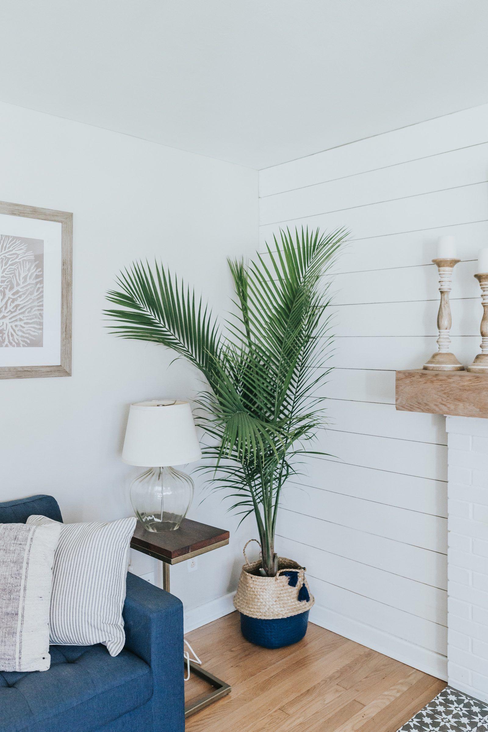 Coastal remodel jettset farmhouse bedroom wall colors