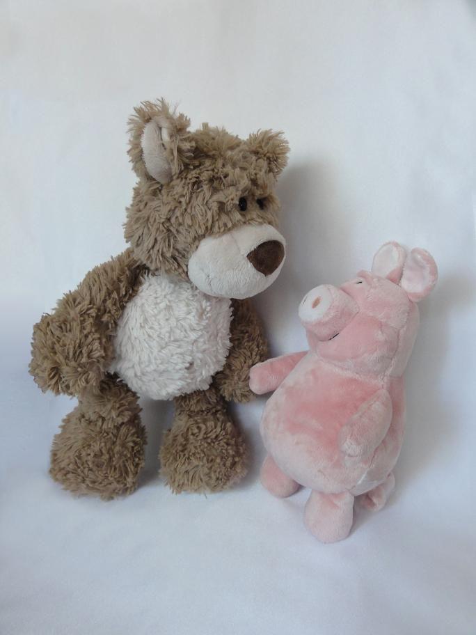 Teddy und Schwein senden ganz viele liebe Grüße an Jonah und Ella