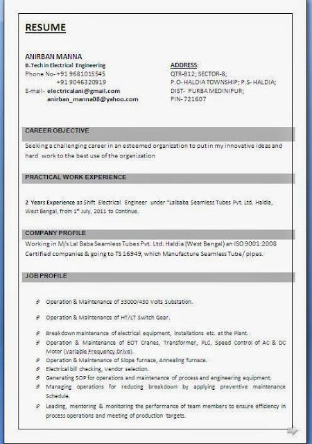 best curriculum vitae examples Beautiful Excellent Professional - what is a resume profile