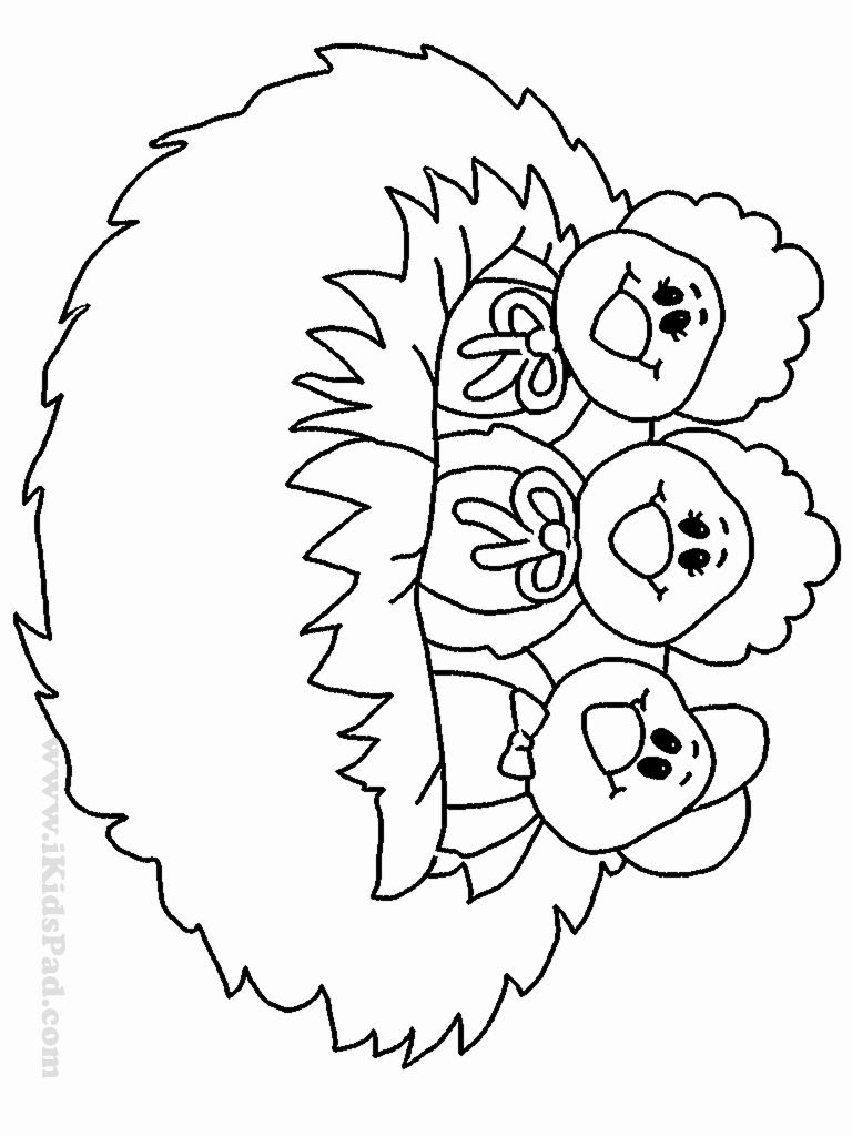 Bird Nest Coloring Page Awesome Baby Bird Free Coloring Pages In 2020 Bee Coloring Pages Coloring Pages Shark Coloring Pages