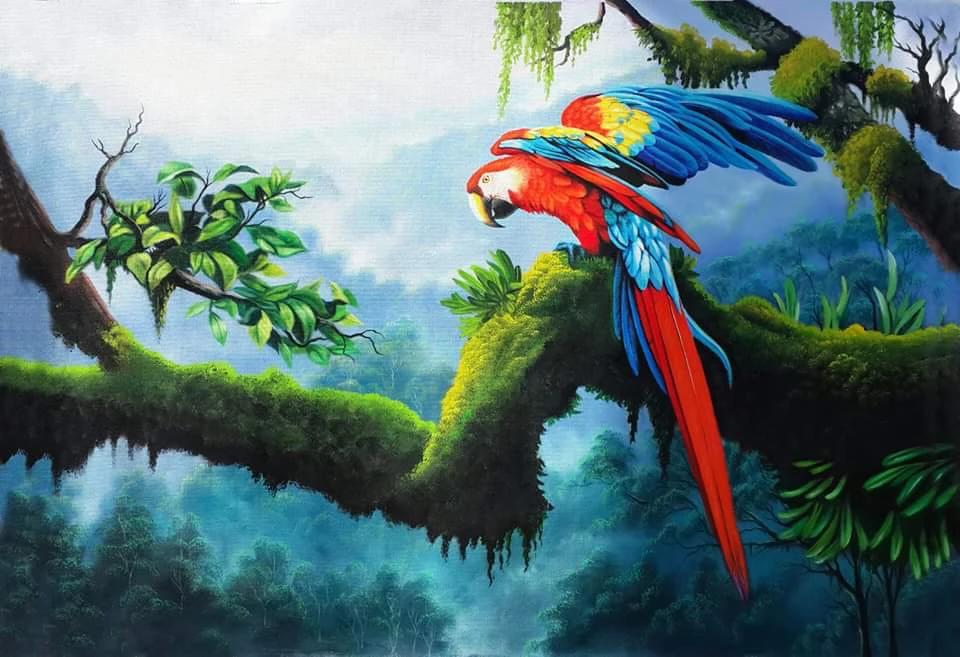 Primer Vuelo Pinturas Naturaleza En 2020 Arte De Aves Pintura De Pajaros Pinturas