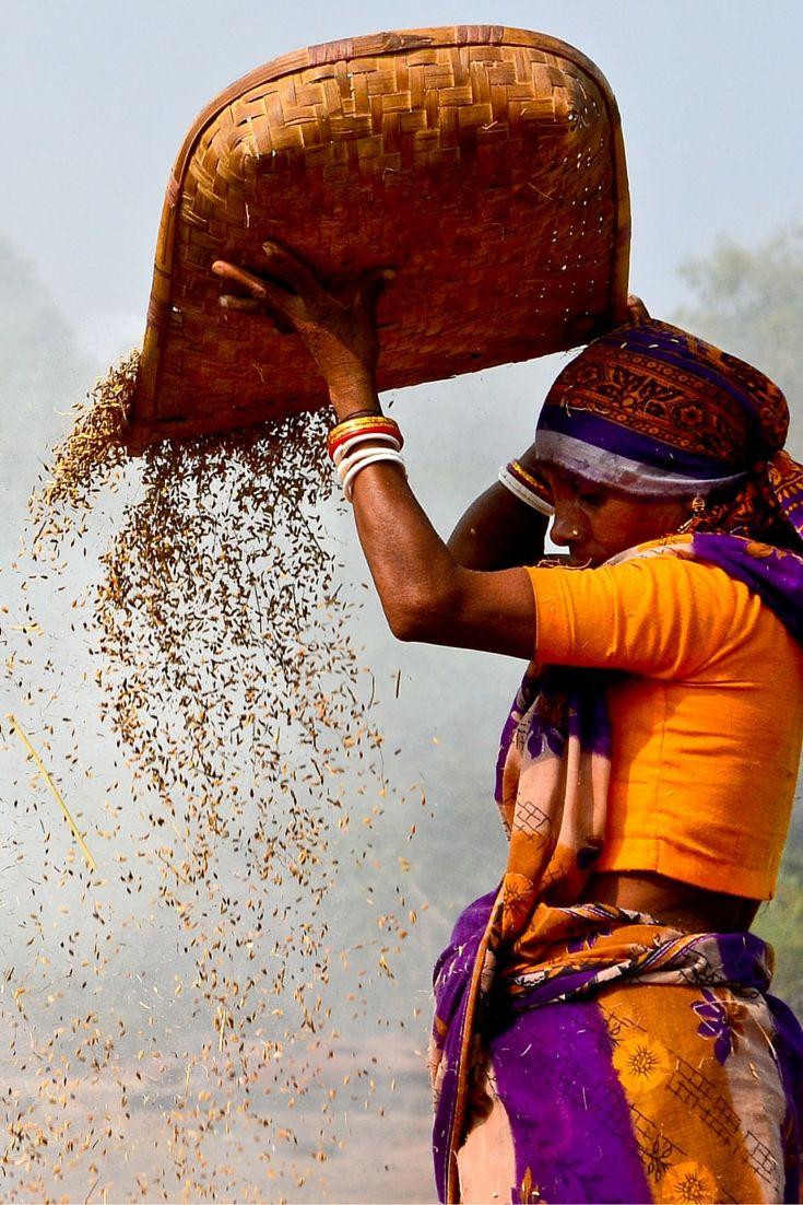 Annapurna Microfinance werkt júist in die gebieden waar andere microfinancieringsinstellingen dat niet doen: https://dekleurvangeld.nl/annapurna-microfinance/