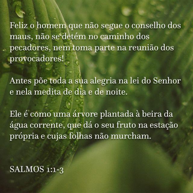 Pin De Mailson Portugues Em Salmos Salmos Salmos 1 E Citacoes
