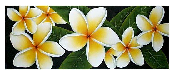 Plumeria Art And Frangipani Art Flower Paintings Flower Painting Tropical Art Print Flower Art