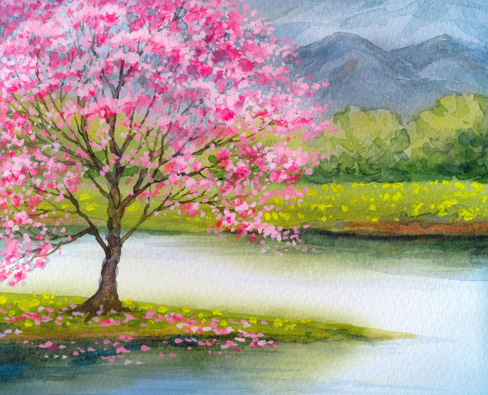 Pink Tree Blooming On The Lake Blooming Tree Painting Nature